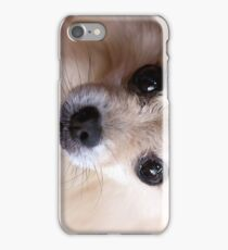 Precious Pomeranian iPhone Case/Skin