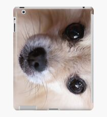 Precious Pomeranian iPad Case/Skin