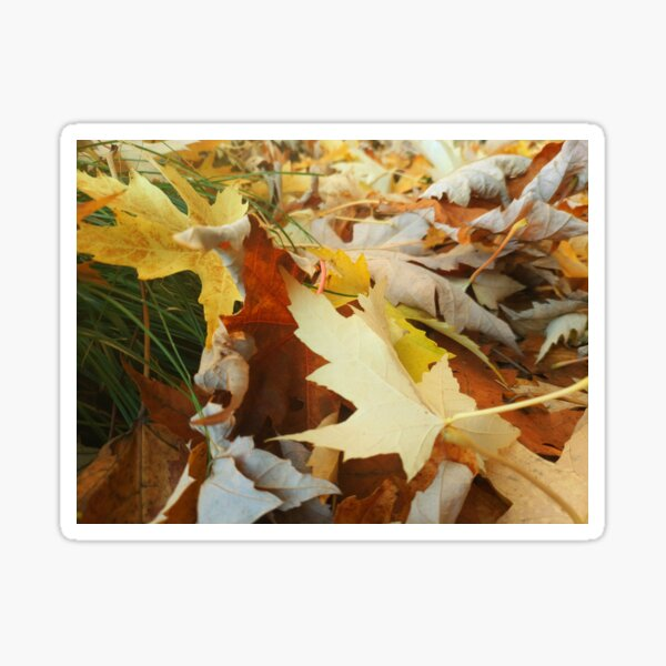 Friendly Leaves Sticker
