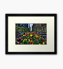 Michigan Ave Tulips, Chicago Framed Print