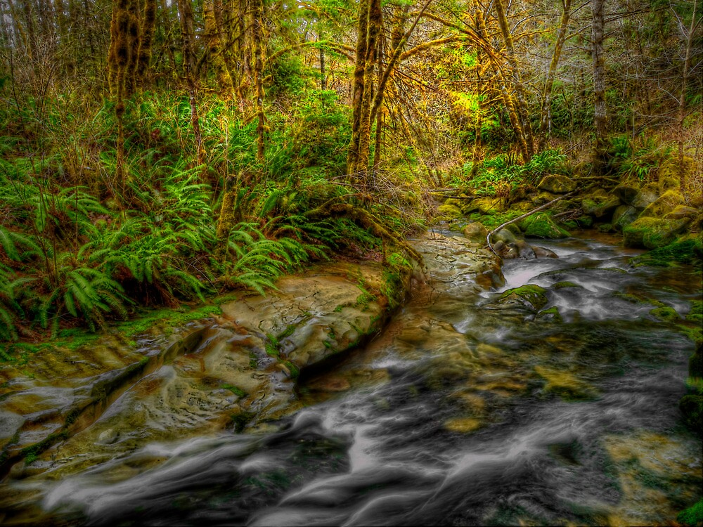 In The Hands Of His Grace by Charles & Patricia   Harkins ~ Picture Oregon