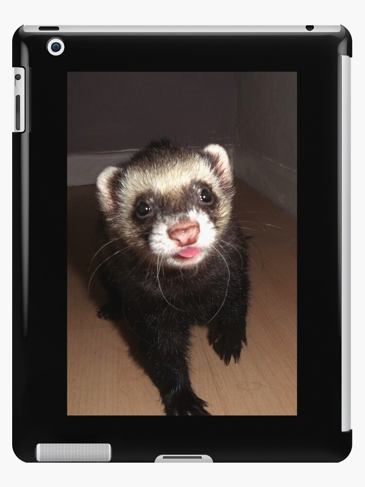 Ferret With Tongue Out Ipad Cases Skins By Fennic Redbubble