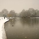 And The Snow Kept Falling by berndt2