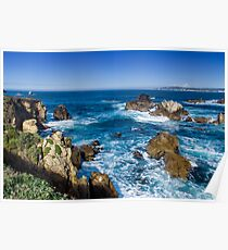Point Lobos State Park - Sea Lion Point Poster