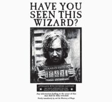 Have You Seen This Wizard? | Unisex T-Shirt