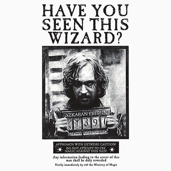 TShirtGifter presents: Have You Seen This Wizard? | Unisex T-Shirt