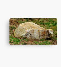 Chiseled Rock Canvas Print