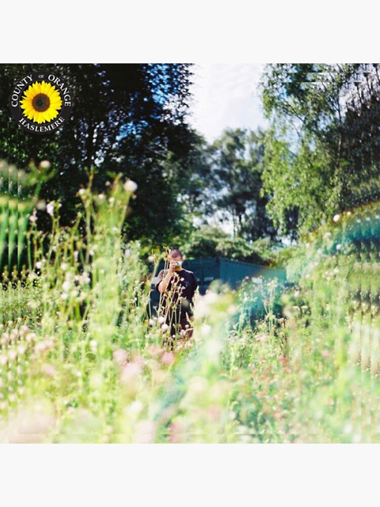Rex Orange County - Sunflower Album Cover by charlottetsui