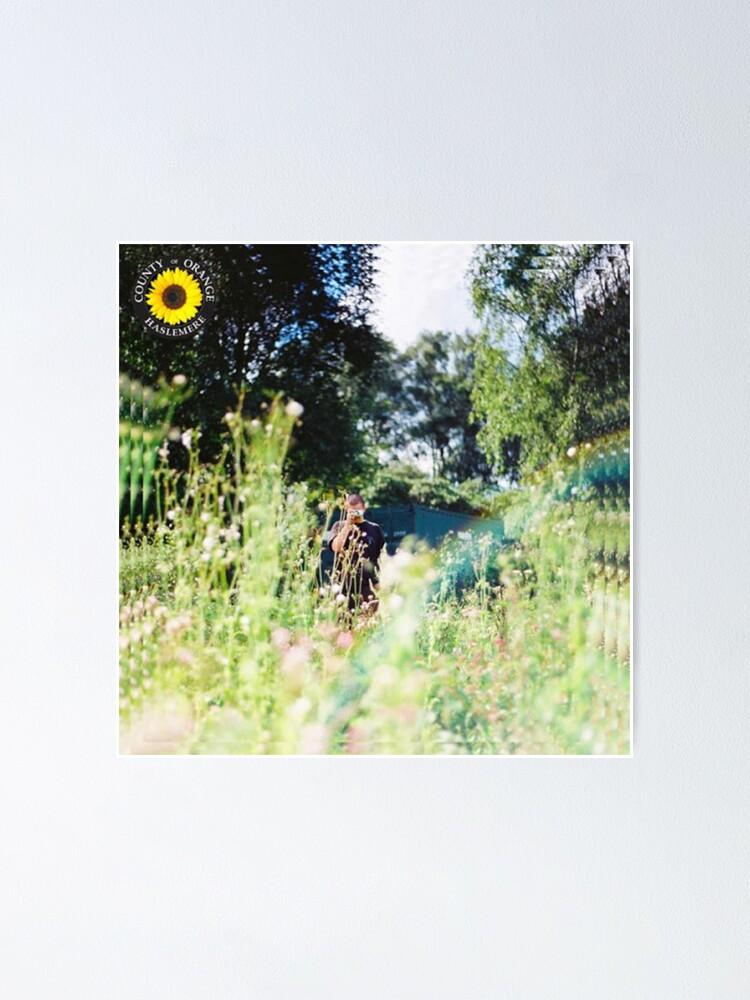 Alternate view of Rex Orange County - Sunflower Album Cover Poster