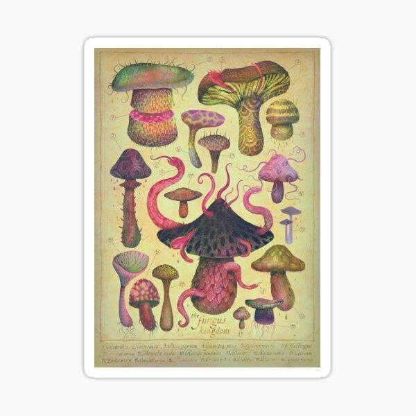 The Fungus Kingdom Sticker