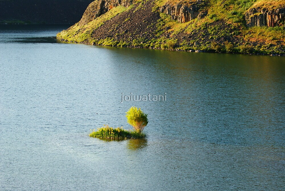 An Island at Coulee Lake by joiwatani