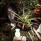 BBQ Pineapple Pot by counterpartfilm