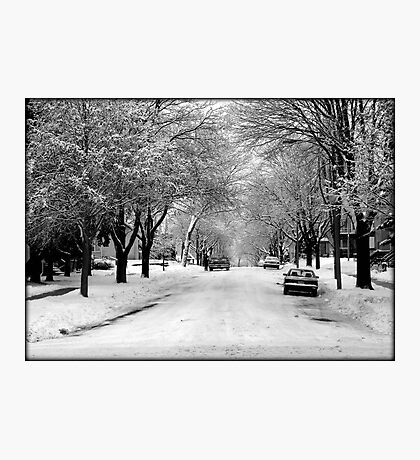 Everything is pretty when covered by snow © Photographic Print