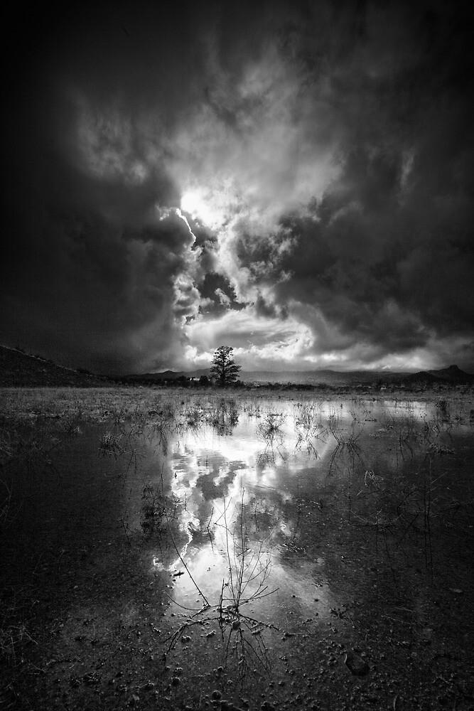 Light Storm by Bob Larson