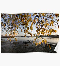Autumn on the Deben River Poster