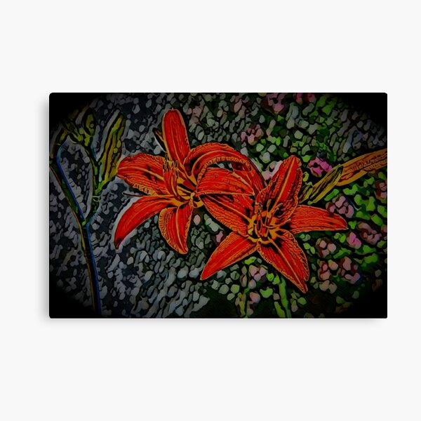 Nightblooming Daylily Flowers Canvas Print