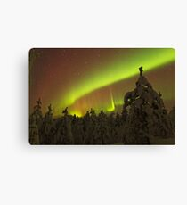 Auroral Arc over Trees Canvas Print