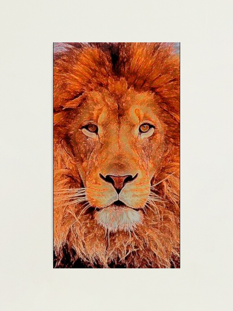 Alternate view of KING OF THE JUNGLE Photographic Print