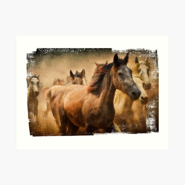 Galloping horses. Portrait. Colorful painting. Art Print