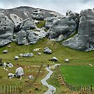 Castle Hill Boulders, New Zealand by Dilshara Hill