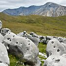 Limestone Boulders by Dilshara Hill