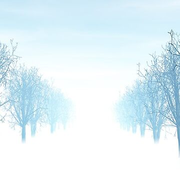 Winter avenue of trees by bubblenjb
