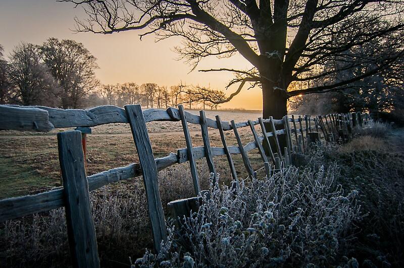 Winter's Rise by mraquinn