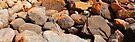 Coastal Rocks. by Andy Newman