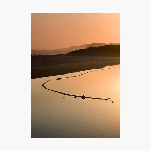 View of the Great Serpent, Looking Towards Point Hicks.  Photographic Print