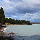 """"""" Lake Pukaki """" by terryfellows"""