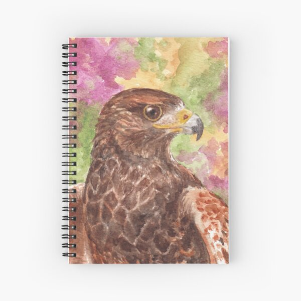 Harris Hawk, Sonoran Desert Spiral Notebook
