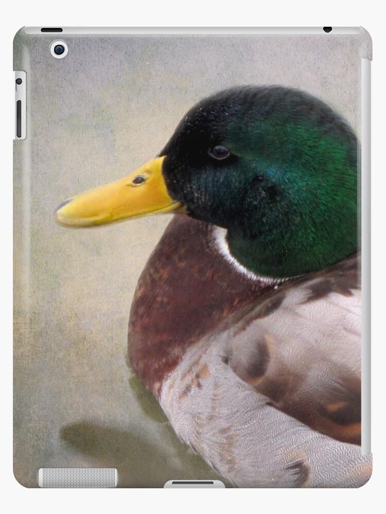 Mallard Drake iPad by Carol Bleasdale