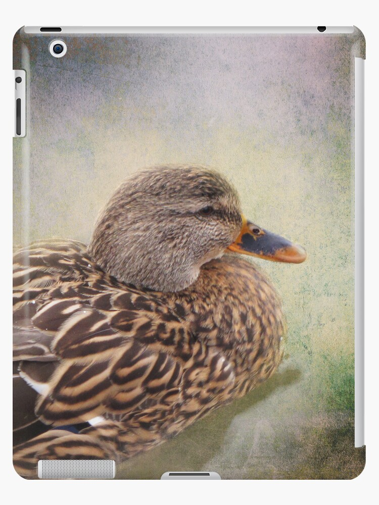 Mallard Duck iPad Case by Carol Bleasdale