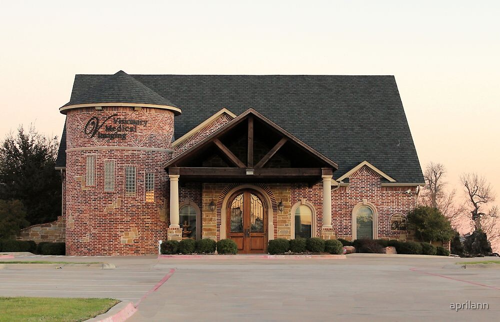 Visionary Medical Imaging Building, Sherman, Texas, USA by aprilann