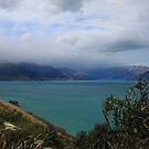 """ Lake Wakatipu "" by terryfellows"