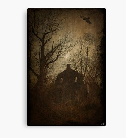Going Back To Amityville Canvas Print