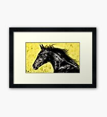 Wild nature - horse #5 Framed Print