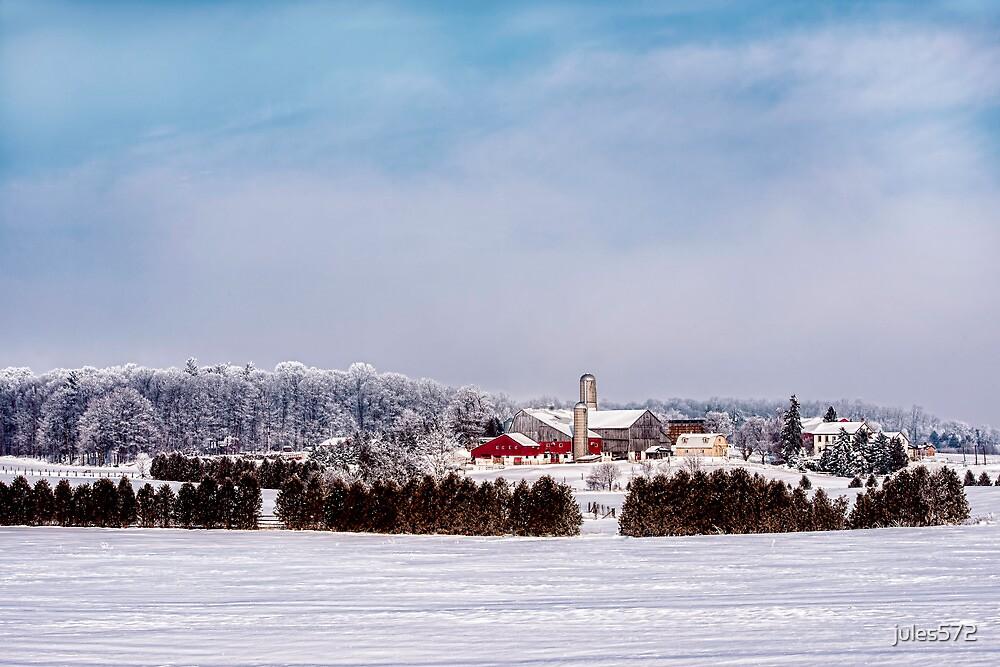 Matthew B. Martin Farm - St. Jacobs, Ontario, Canada by jules572