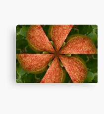 Take a slice of apple Canvas Print
