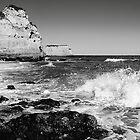 Breaking wave. by Paul Pasco