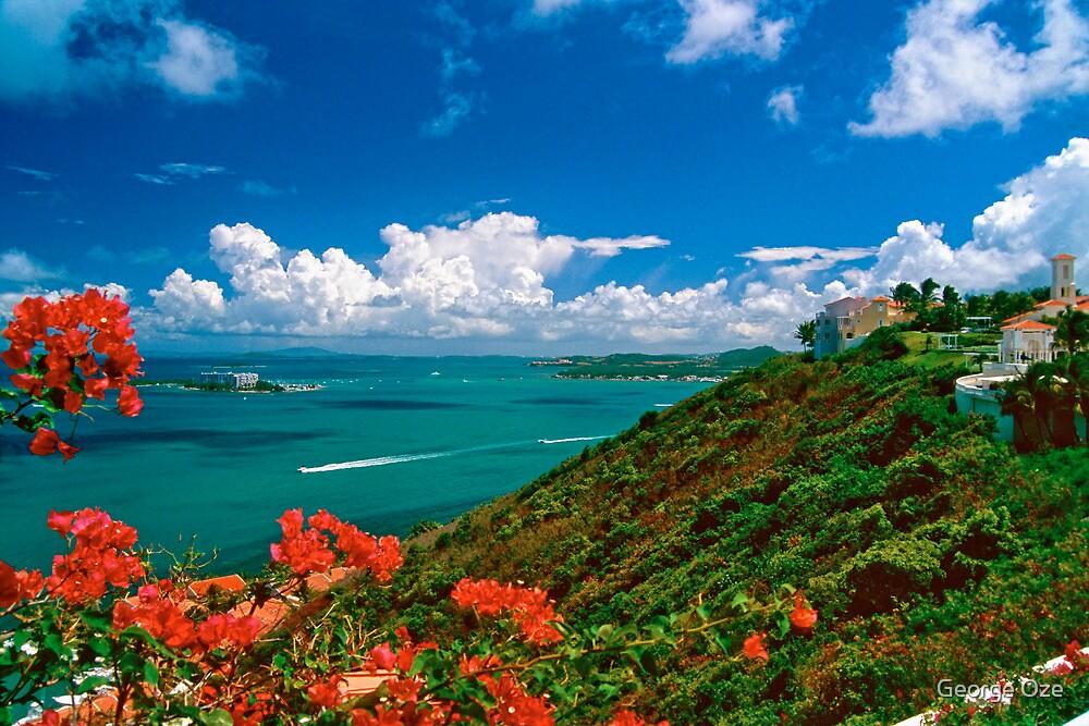 Fajardo Coastal Scenic by George Oze