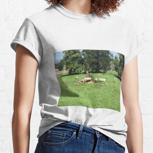 Merch #88 -- Sheep - Shot 4 (Hadrian's Wall) Classic T-Shirt