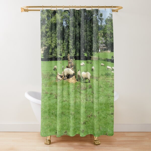Merch #88 -- Sheep - Shot 4 (Hadrian's Wall) Shower Curtain