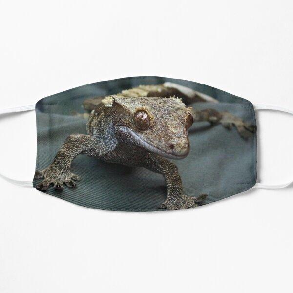 Crested gecko Flat Mask