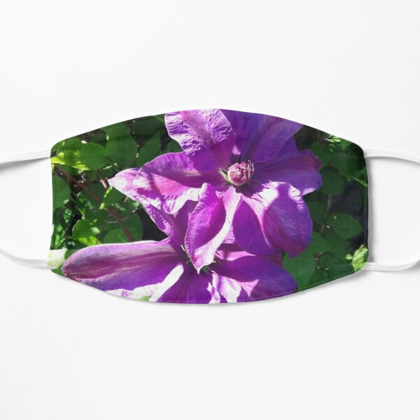Purple clematis photograph Mask