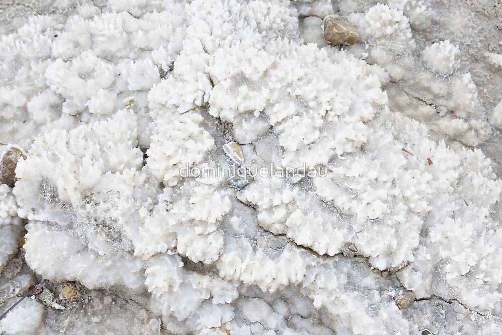 Mineral sediments by dominiquelandau