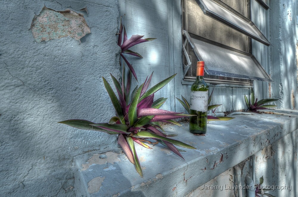 A Tropical Thing in Fox Hill Village, The Bahamas by Jeremy Lavender Photography