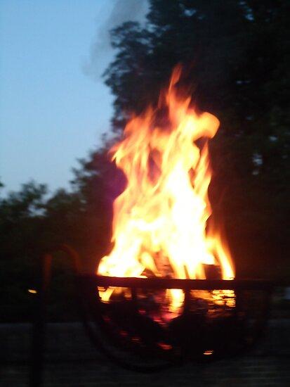 beautiful fire at night by masoney