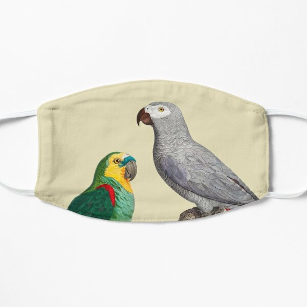 African grey parrot and Blue-fronted amazon Flat Mask