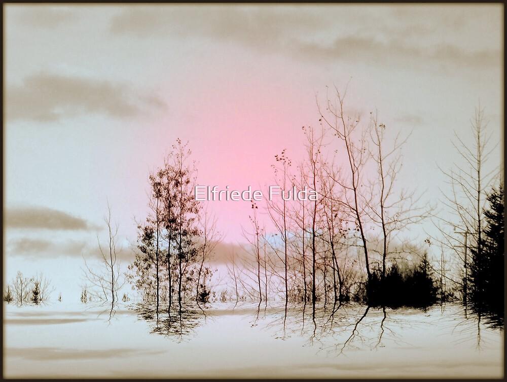 Hint of Pink ! by Elfriede Fulda